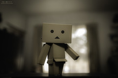 (yuyustudio) Tags: danboard  bokeh toy 5diii canon ef1635mm flash
