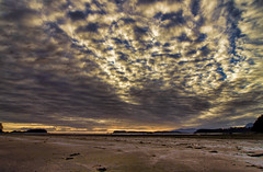 Bedding for the Gods (John A. McCrae) Tags: clouds sky cirrusclouds sunset beach chestermanbeach tofino pacificrim westcoast seaside coast vancouverisland britishcolumbia pentax sand