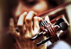Violin is food for romance. (berkecanavc) Tags: enstrumental music violin lens telefoto sigma 70300mm 600d canon