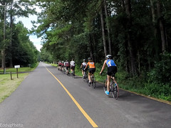 GOPR8368 (EddyG9) Tags: mstour150 ms tour training ride covington abita outdoor cycling cyclists bicycle louisiana 2016 paceline gopro hero3 teamsmiley rookie riders