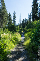 _IMG5279 (blackcloudbrew) Tags: hd2040limited pentaxk3 hike laketahoe placer squawvalley