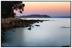 Pre-dawn Wonder (juliewilliams11) Tags: photoborder outdoor serene tranquil waterfront water morning newsouthwales australia pink rocks trees canon bay portstephens