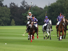 Guards Polo Club Aug 2016 19 (Timelapsed) Tags: sport ourdoors horseback hourse windsor windsorgreatpark