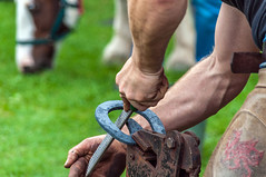 Farrier - The Finished Article! (Nikki & Tom) Tags: aberaeronwelshponiesandcobsfestival aberaeron wales britain uk horses ponies farriery blacksmith demonstration horseshoes
