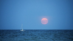 Sailing by Moonlight DSN0105 (iloleo) Tags: moon boat toronto nikond7000 moonrise harvestmoon lakeontario scenic