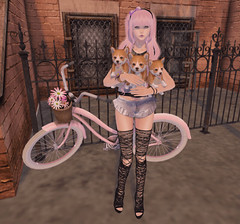 #REIGNBLOGGERSEARCH2016 (hump muffin) Tags: ifttt wordpress second life blogging hump muffin sl cute fashion avatar girl clothes blog akheads astralia ayashi bike black dogs fashiowlposes floris flower imeka kawaii kotolier mesange modestreet purple sale secondlife spirit winged collabor88 cosmeticfair events fashionblogging treschic reign reignbloggersearch2016