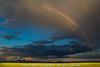 field of gold (light shift) Tags: rainbow fieldofgold potofgold rain storm canolafield bright dark cloudy laclabiche northeralberta kevinwahl lightshift