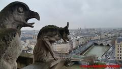 Paris - Vue depuis les tours de Notre-Dame - Gargouille (soyouz) Tags: eglise notredame gargouille patrimoineunesco paris4e 75paris francela