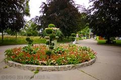 PLW_5527 (Laszlo Perger) Tags: wien vienna sterreich austria blumengarten hirschstetten flowergarden