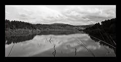 [LandScape] (nd |reloaded|) Tags: bw film rollei landscape bn 150 4x5 100 process rodinal chamonix paesaggio tonal cpe pellicola 945min 45n2 jobo2