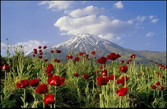 Damavand Peak - Amol  city (Amolcity) Tags: wallpaper iran        amoliran cuntery