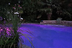 Warm Summer Night (joconno1) Tags: summer pool night warm edited breeze p7