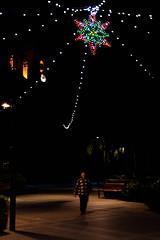 343/365 - The Guiding Star (Alex Stoen) Tags: christmas plaza nightphotography espaa man church night canon square geotagged star navidad luces noche google spain flickr shadows streetphotography picasa iglesia belltower collection paseo sanjuan tradition estrella sombras facebook picassa christmaslighting alumbrado ef50f14 project365 lucesnavideas fotografiacallejera sanjuandealicante canoneos5dmarkii 343365 5dmk2 theguidingstar alexstoen alexstoenphotography