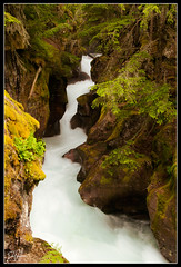 Avalanche Gorge-ous (Dan.Heacock) Tags: park blue water forest moss nikon montana glacier national gorge avalanche rushing d300 danheacock