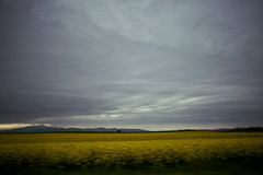 Still there (noemi.m) Tags: sky mountains nature field clouds landscape outdoor traveling rapeseed