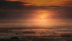 Fog of the Sunset (PixTuner) Tags: wasser pixtuner sonne sonnenuntergang sunrise nebel fog dunst dust ocean nordsee dorum obereversand