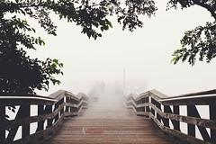 Norman Levy Preserve_002_watermark (Klutch17) Tags: landscape fog canon pier gloomy eerie
