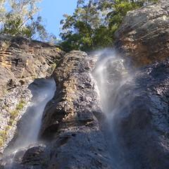 Springbrook Plateau, on 9th June (tanetahi) Tags: springbrooknationalpark stream waterfall cascade queensland australia