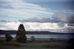 Same Old Horizon (Magnus Bergstrm) Tags: fujicolor super g 400 plus fuji film analog photography luminox 356sl 356 sl luminox356sl ekshrad sweden sverige vrmland wermland busjviken hole