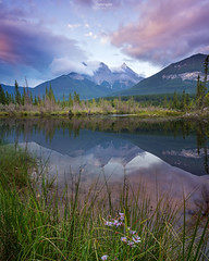 'Summer Sisters' - Canmore, Alberta (Gavin Hardcastle - Fototripper) Tags: canmore three sisters bow river sunrise reflections clouds mountains kananaskis summer flowers wild banff photo tours photography workshops gavinhardcastle fototripper