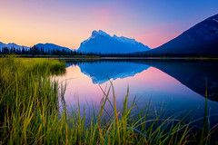 Vermilion Lakes (Andrew Cooney Photography) Tags: vermillionlake mtrundle canada sunrise explore explorecanada britishcolumbia alberta canadianrockies banff banffnationalpark andrewcooney andrewcooneyphotography naturephotography travel adventure adventurephotography pastel landscapephotography nikon nikond800 explorenikon