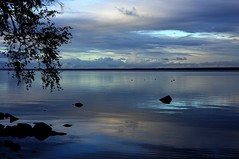 September blues (Joni Mansikka) Tags: nature autumn outdoor lakescape lake reflection blues lakeside clouds sky branch stones glow silhouettes hues colours pyhjrvi ylne suomi finland