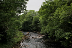 River Swale at Keld (Walruscharmer) Tags: riverswale pennineway nationaltrail riverscene yorkshiredales northyorkshire nationalpark yorkshire england