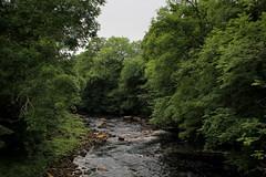 River Swale at Keld (Walruscharmer) Tags: riverswale pennineway nationaltrail riverscene yorkshiredales northyorkshire nationalpark yorkshire england