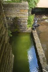 DUG_7330r (crobart) Tags: fallingwater frank lloyd wright kaufmann bear run nature reserve pennsylvania