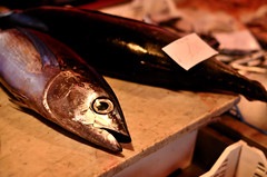 Catania's fish market (ciccioetneo) Tags: catania sicilia sicily italia italy piscaria fishmarket pescheria folklore nikond7000 ciccioetneo apiscaria nikon50mmf14 fish pesce nikon2470mm28 street streetphotography