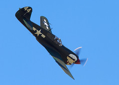P-40 Warhawk (Bernie Condon) Tags: warhawk tomahawk kittyhawk p40 curtis fighter military warplane ww2 vintage preserved usaaf aircraft plane flying aviation