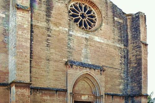 Loupian (Hérault), église Ste-Cécile (21)