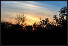 Spring Sunset (Photography By Shaeree) Tags: sunset ontario silhouette nikon sunsets trenton quinte ontariocanada d90 quintewest sunsetsilhouette nikond90 trentonontario quintewestontario