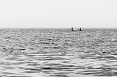 [ fishing ]