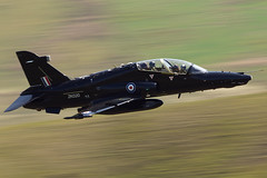 """SPEEDY!!"" (PhoenixFlyer2008) Tags: wales hawk aviation military low valley raf t2 anglesey level2 machloop lfa7 neilbates zk020 19rsquadron 4rsquadron airteamcanoncouk"