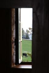 Guten Morgen (steffi's) Tags: restaurant schweiz switzerland milk suisse zimmer farming landwirtschaft jura svizzera alp kse ferme neuchtel milch neuenburg creuxduvan berggebiet massenlager neuenburgerjura
