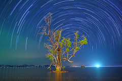 Startrail at Koh Mak (joeziz EK pholrojpanya) Tags: from thailand view you photos or everyone imagex seax photox cityx naturex artistx photographyx nightx nikonx travelx landscapex gettyx twilightx imagesx cityscapex skylinex fototrovex picksx