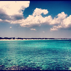 Punta Prosciutto - Porto Cesareo ~ Salento (Liv ) Tags: travel sea italy parco nature interestingness italia colours explore planet puglia lecce 4s iphone apulia laiv puntaprosciutto impressedbeauty laivphoto iphoneshot