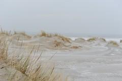 Vakantie, Terschelling , winter 2010. (S. Michele) Tags: lighthouse terschelling dunes thesee winter2010