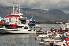 Boats in downtown Reykjavik (Hayden Yates) Tags: