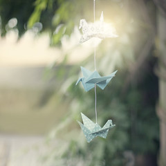 I can see summer in the distance (Morphicx) Tags: birds origami bokeh creative beautifullight canon5d canon50f14 folded origamicrane cranebird