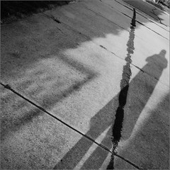 Light and Shadow (joeldinda) Tags: shadow bw person weeds raw photographer trellis driveway kinda selfie joeldinda 1v1 200366 3662012