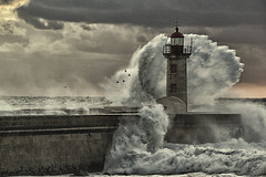 Facing the Storm (gulfman1) Tags: light sea lighthouse storm color art love nature beauty weather danger canon harbor fight couple soft exposure paint waves peace postcard details fineart union tranquility wave adventure together revolution dare rough farol challenge navigation tender meteo pilotos stormseason bestcapturesaoi elitegalleryaoi ruby10 hardbirds lighthousesecl