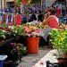 Flores mercado semanal Ribadesella