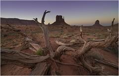 Monument Valley 0036 (Ezcurdia) Tags: monumentvalley utah arizona usa eeuu navajo tsebiindisgaii limolita navajotrivalpark johnfordpoint