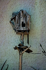 Avian Blight (Art By Pem Photography: Tao Of The Wandering Eye) Tags: fineartphotography canon canoneosrebelsl1 eos sl1 usa birdhouse blight ramshackle wood wooden remnant stilllife handmade wall stucco