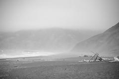 Driftwood Shelter (Mackie Studios) Tags: beachscene beach scene surf shelter wood ocean waves shore shoreline nikon d7100 monochrome blackandwhite mist fog tide seascape