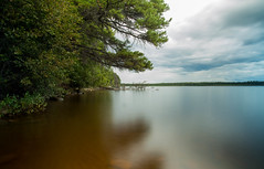 Musreau Lake (wrighteye) Tags: longexposure nature canon lake summer musreau alberta slow shutter trees water clouds camping canada