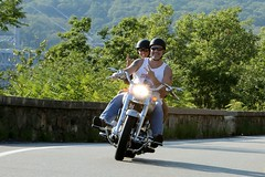 Harley-Davidson 1608203498w (gparet) Tags: bearmountain bridge road scenic overlook motorcycle motorcycles goattrail goatpath windingroad curves twisties outdoor vehicle