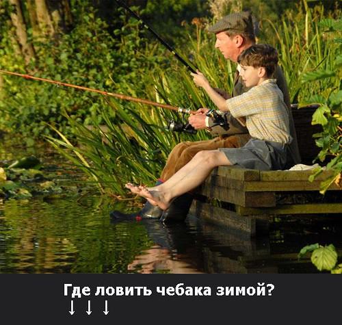 где клюет рыба в тюмени